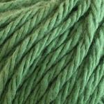 SNC Verde Salvia